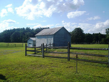 Part of Pitney Farm, photo provided by Saratoga PLAN