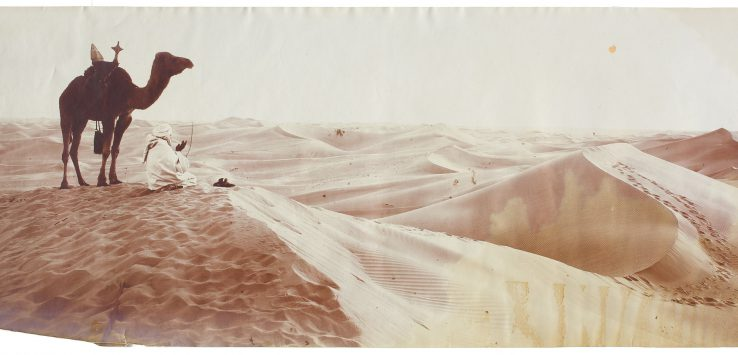 bougault algerian landscape at the tang museum