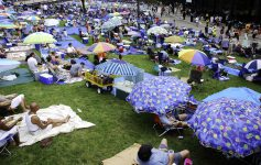 jazz festival attendees on the lawn under umbrellas at SPAC