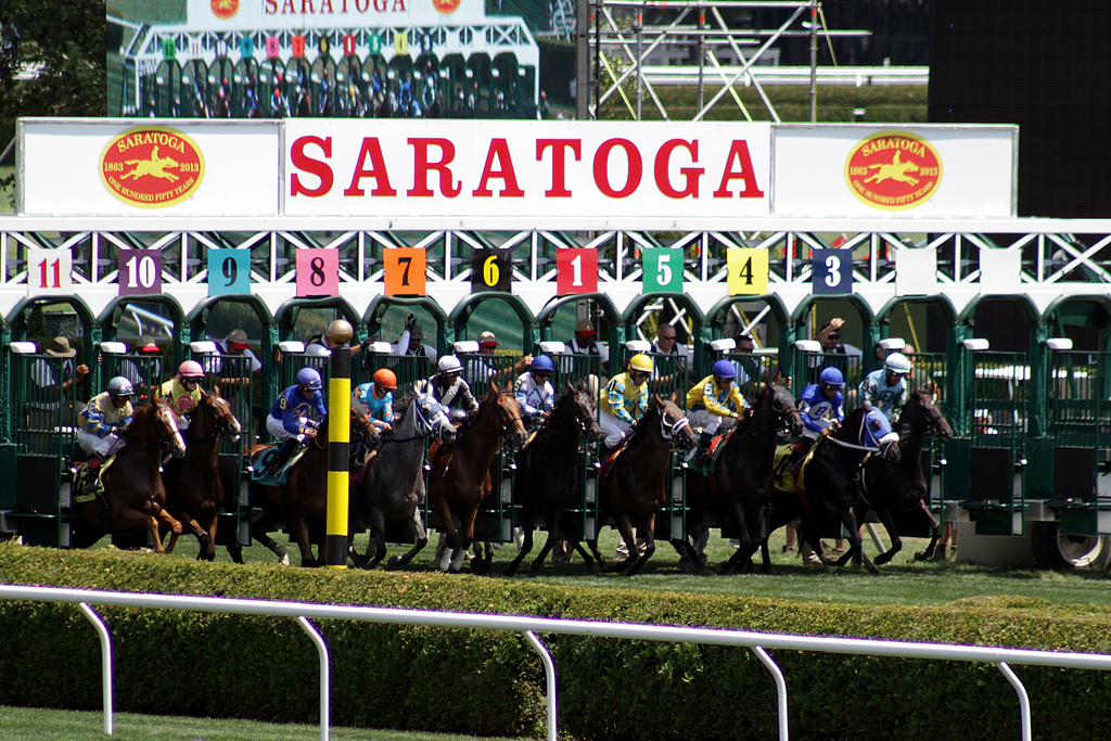 register now for nyra u0026 39 s college  u0026 alumni day handicapping