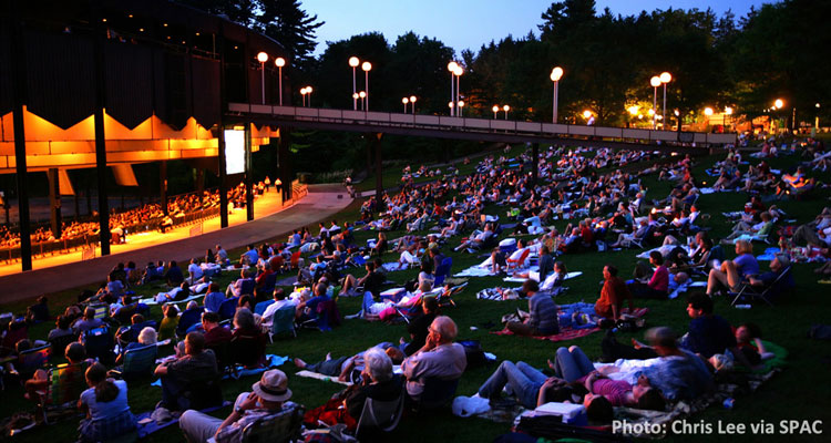 group of people on lawn at spac watching concert