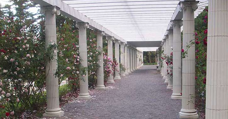 a walkway with pillars and rose bushes