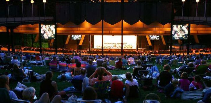 crowd on the lawn at SPAC during an evening performance