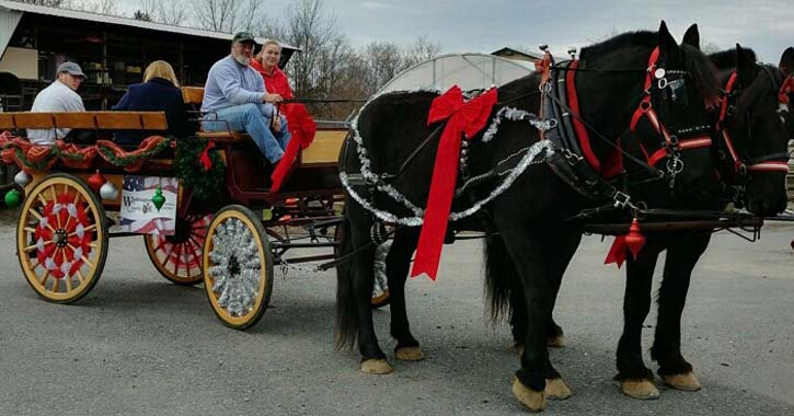 black horses and a carriage