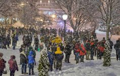 snowy scene in saratoga