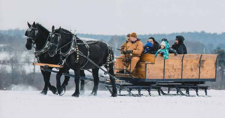 black horses pulling sleigh full of people