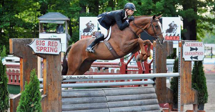 a horse jumping