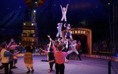 circus smirks event