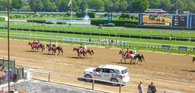 view of horses on the track from the stand