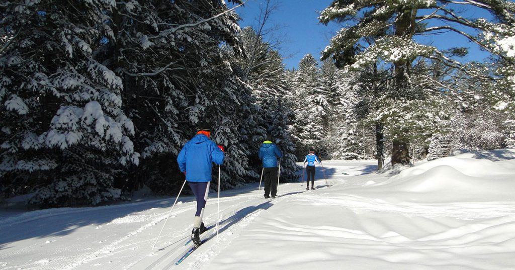 three cross country skiers