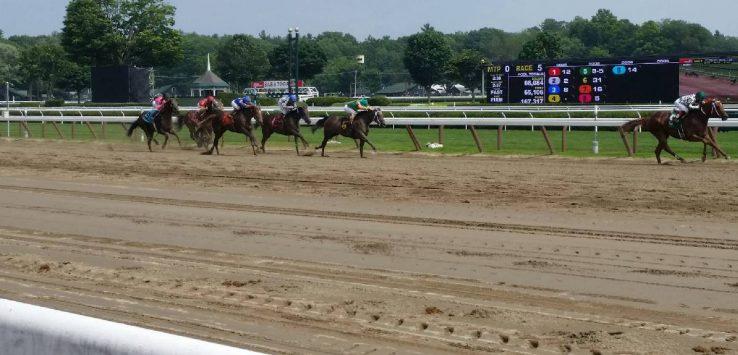 horses racing down dirt track
