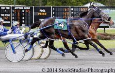 horses and jockeys race on a harness track