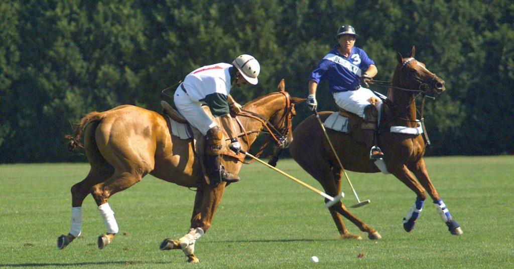 two polo players