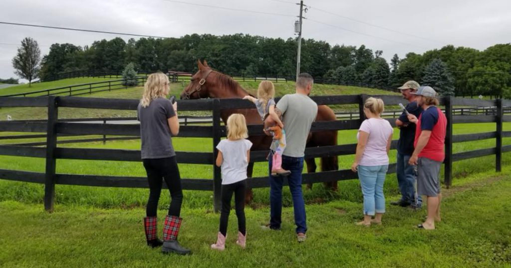 horse farm and people
