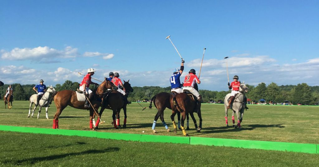 polo players and horses