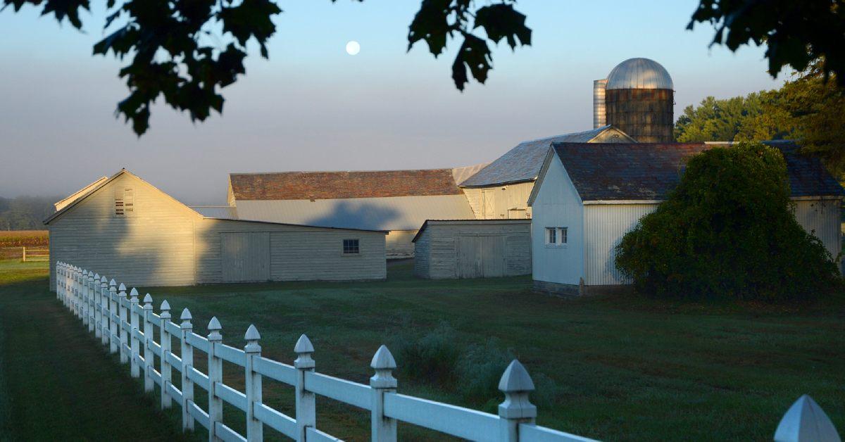 pitney meadows community farm