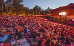 people on spac lawn watching concert