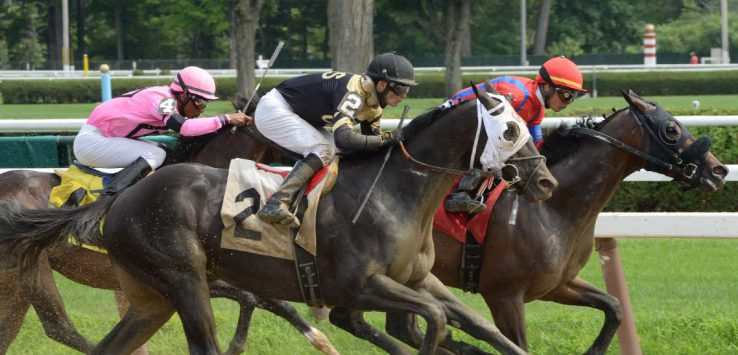 horses and jockeys racing at saratoga