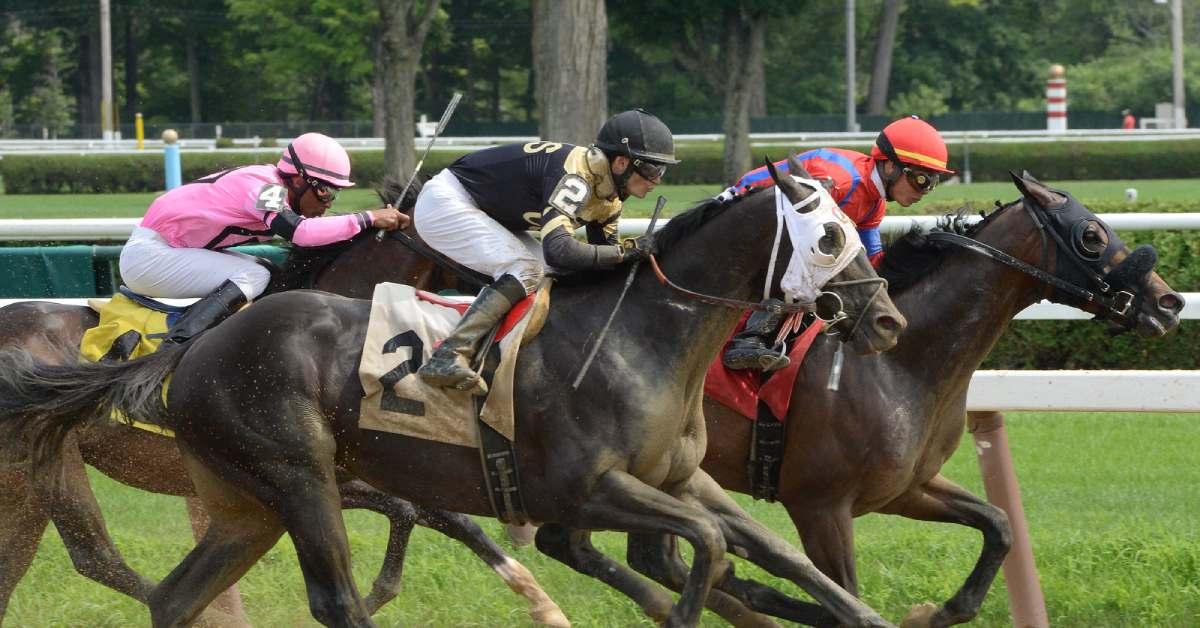 horses and jockeys racing at saratoga