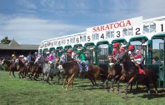 horses leaving the starting gate at the saratoga race course