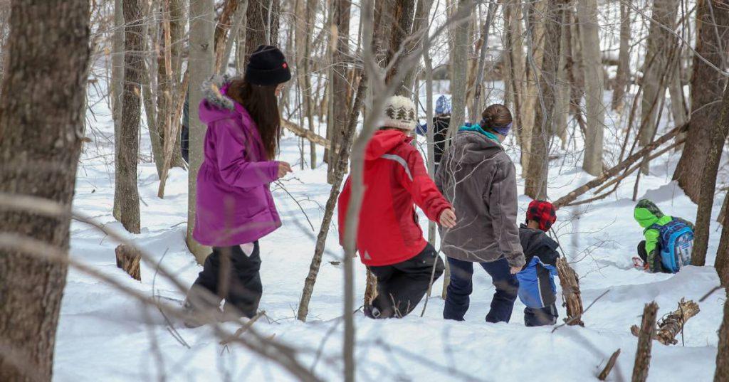 group of people walking through snowy woods