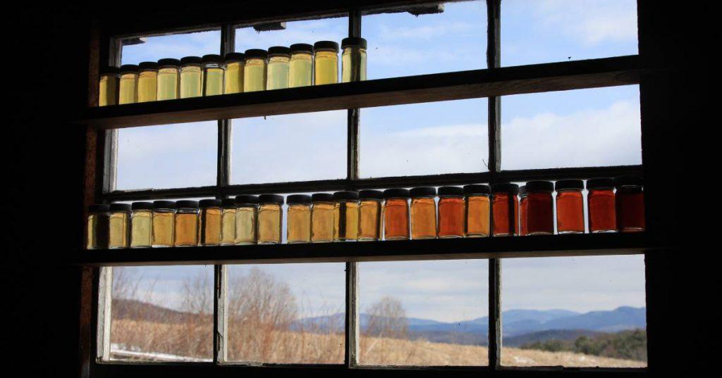 jars of maple syrup on display
