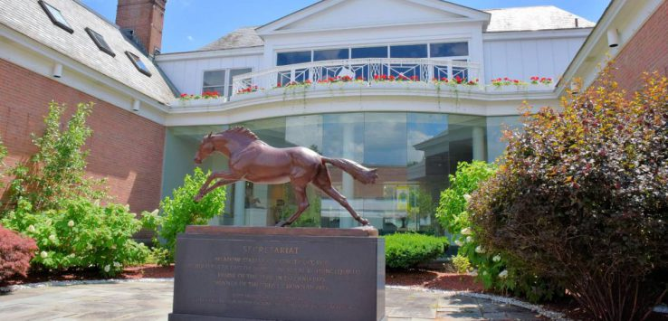 horse statue in front of a museum