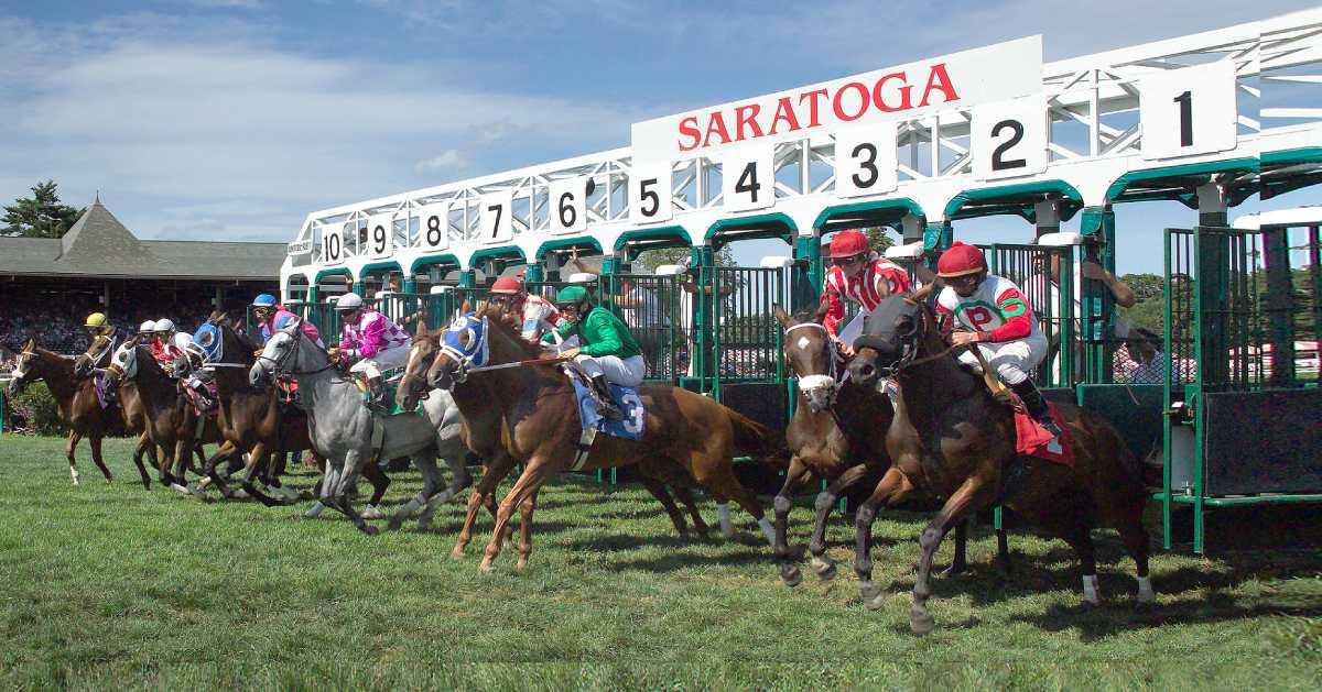 horses leaving starting gate