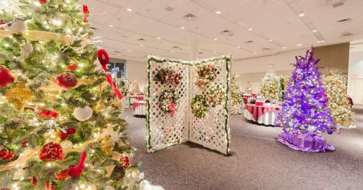 decorated christmas trees on display in a large room