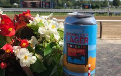 can of lager by flowers at the racetrack