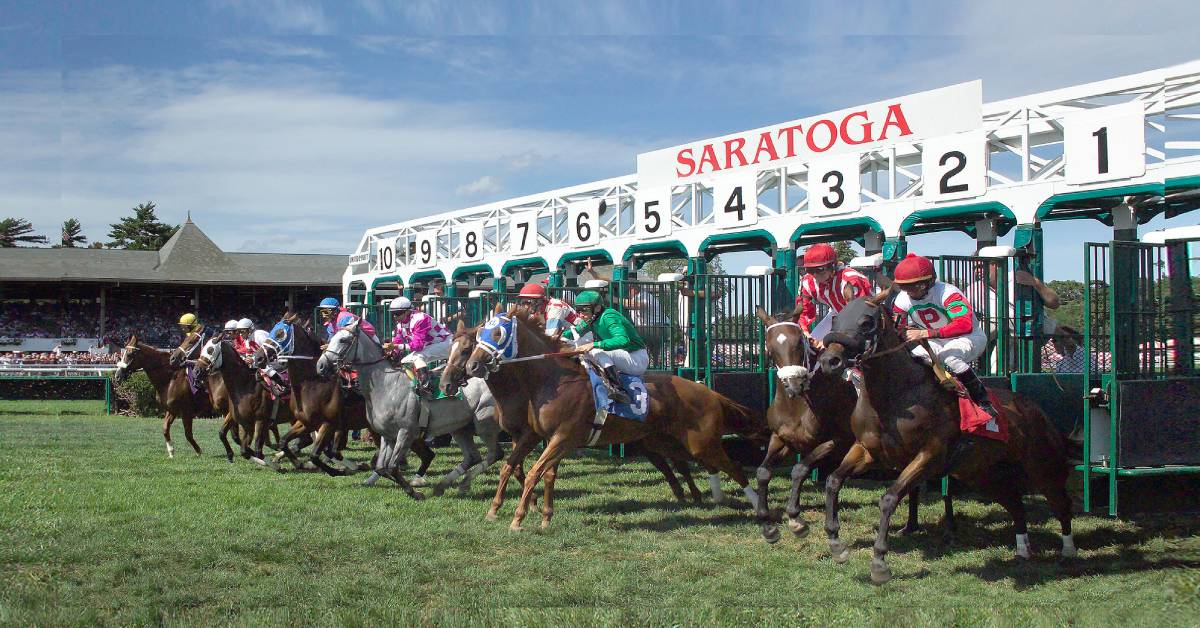 horses on turf running from starting gate