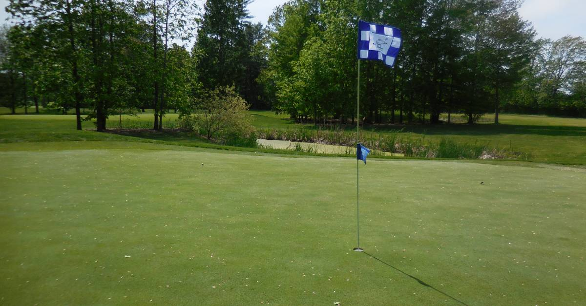flag at hole at golf course