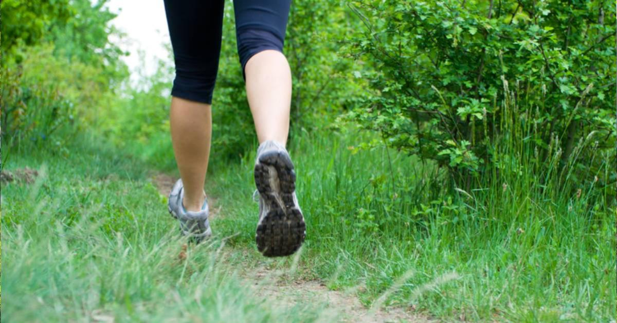 view of legs of a person running in the woods