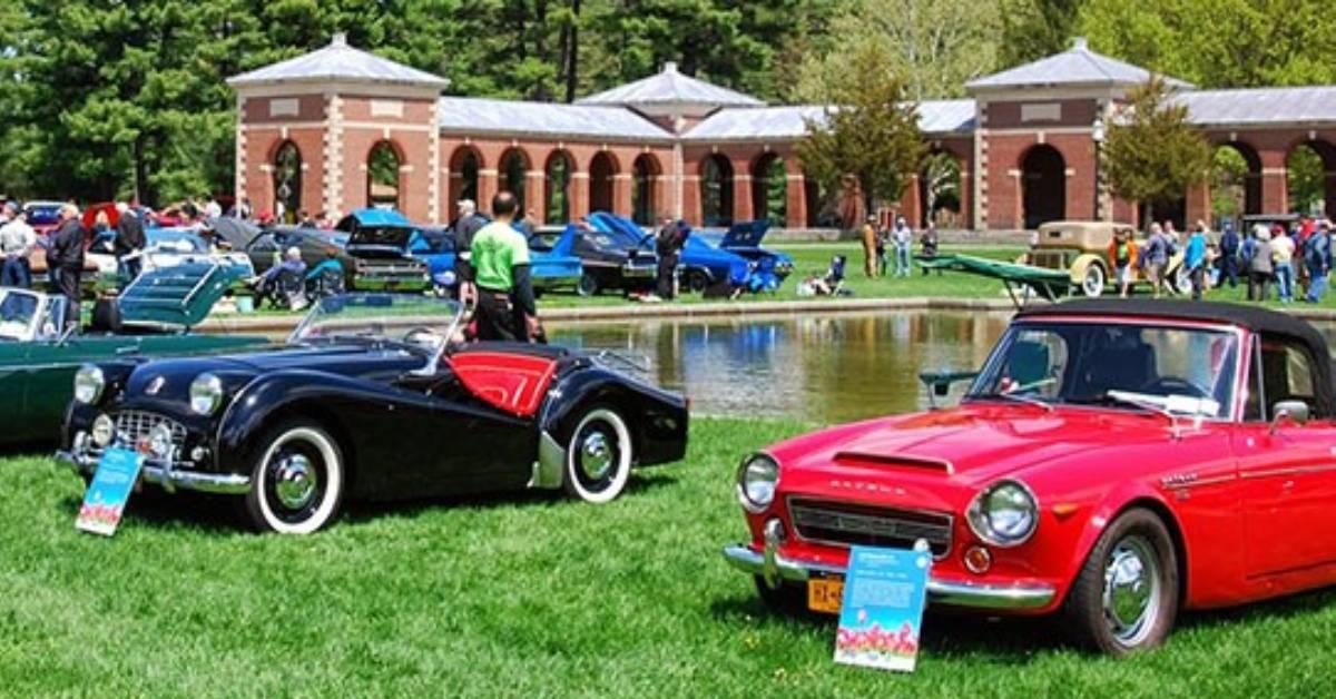 cars at outdoor car show