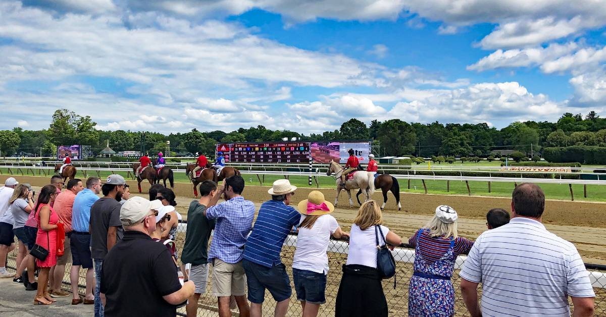 fans at horse racetrack