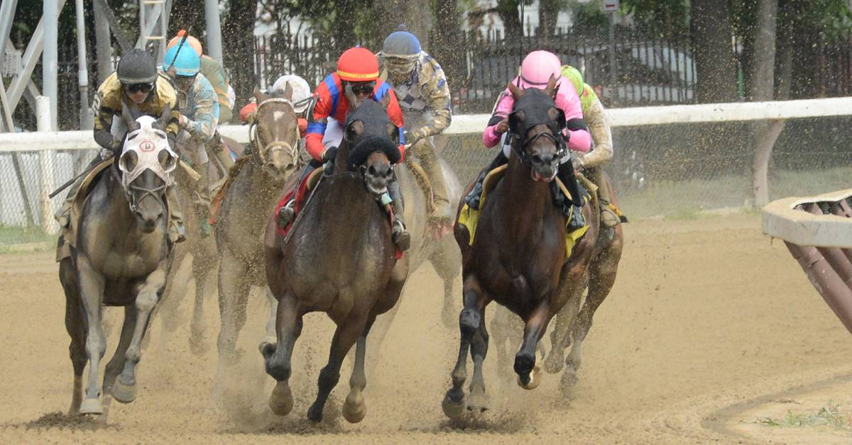 horses racing on a dirt track