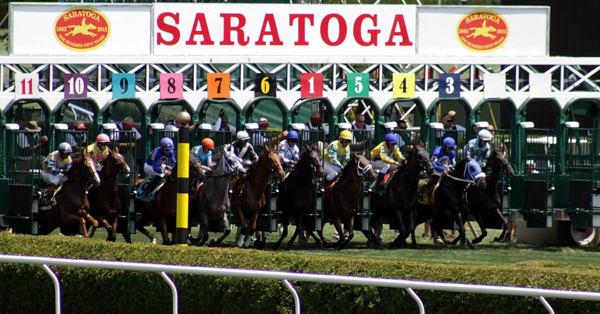 horses racing from starting gate at saratoga