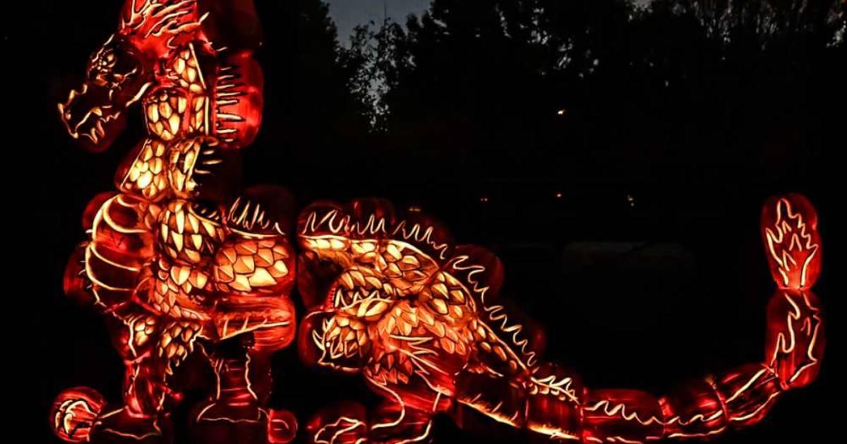 a glowing dragon display