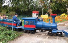 blue train ride at pumpkin area
